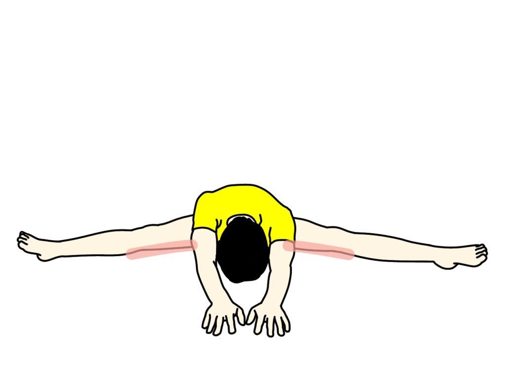 開脚姿勢で行う内もも(内転筋)のストレッチ